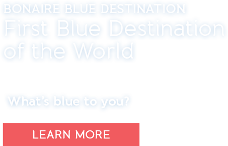 Bonaire Blue Destination. First Blue Destination of the World. What's blue to you? Learn More