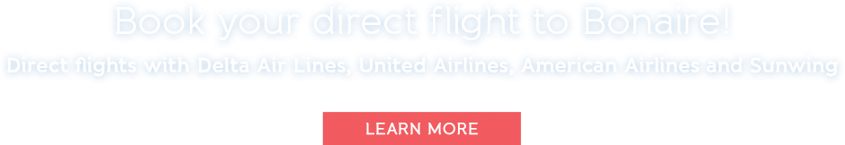 Book your direct flight to Bonaire! Direct flights with Delta Airlines, United Airlines, American Airlines and Sunwing