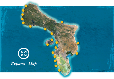 Sightseeing Bonaire Official Tourism Site